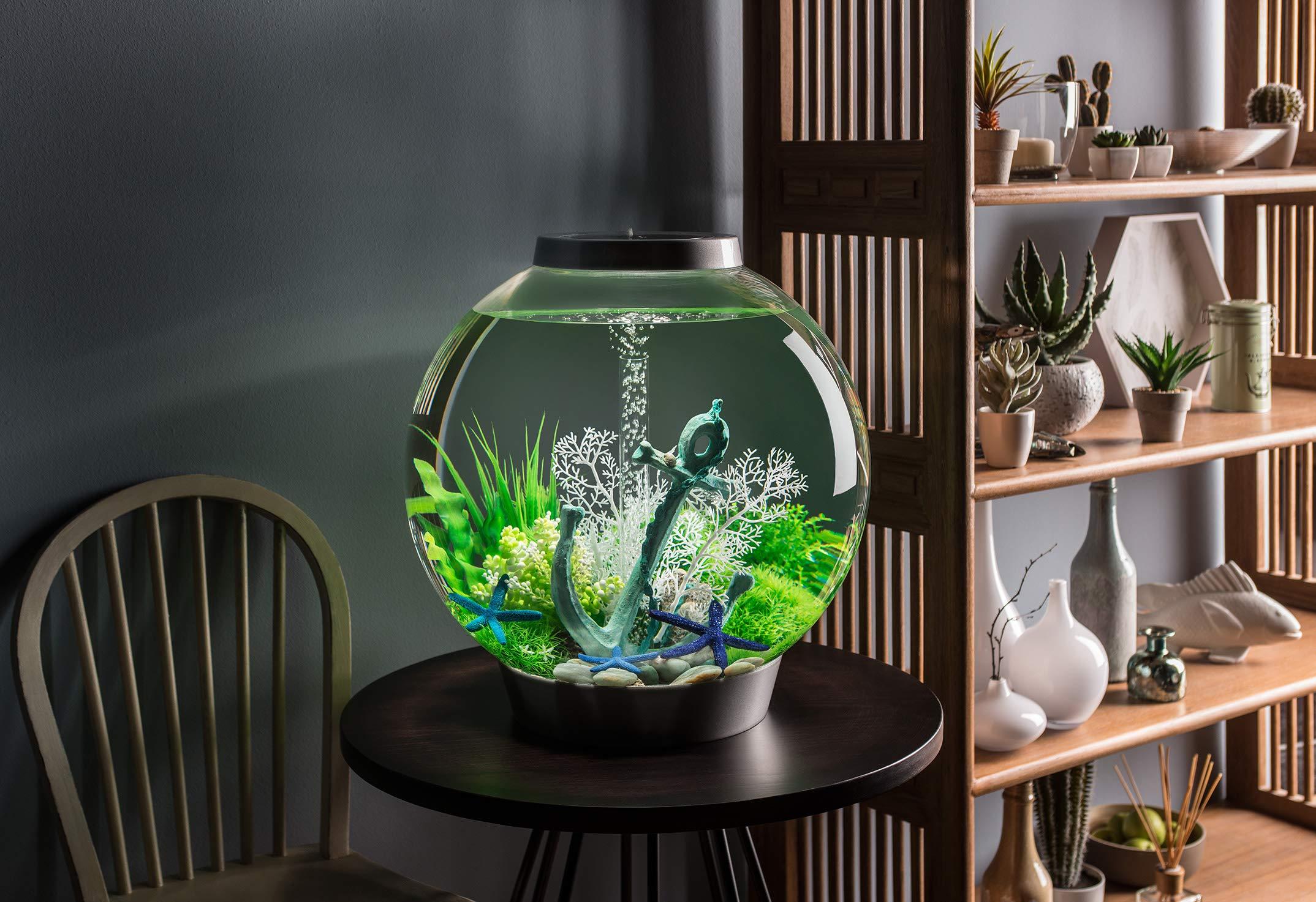 интерьеров аквариум фото для дома этого
